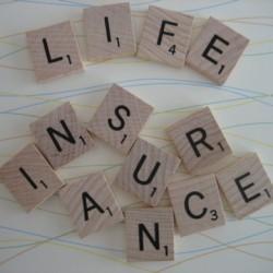Term Life Insurance Term Life Insurance