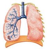 COPD What is COPD?